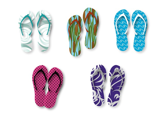 what are flip flops